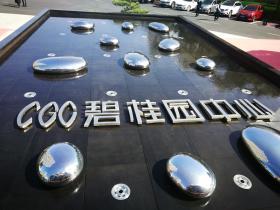 碧桂园中心