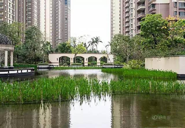 雅居乐花园实景图