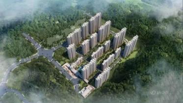龙川·碧桂园