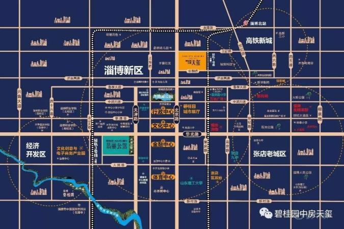 碧桂园中房·天玺规划图