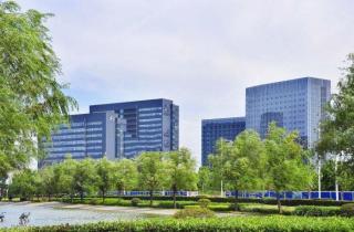 东合发展中心