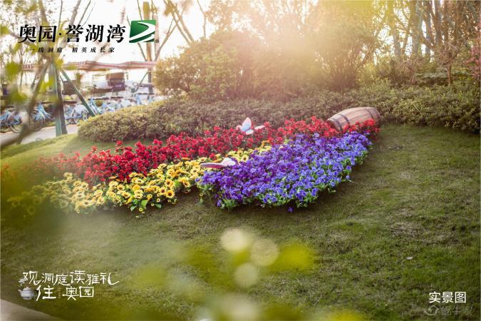 奥园誉湖湾实景图