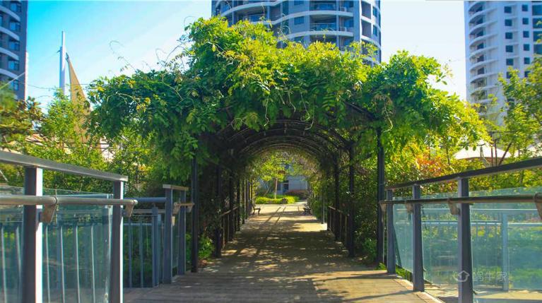 蓝天海景国际公寓实景图