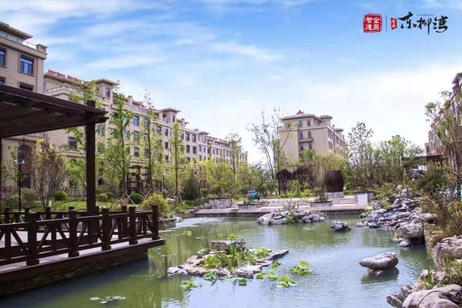 金鼎东柳湾实景图