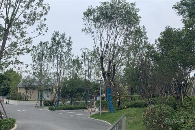 郑州华侨城实景图